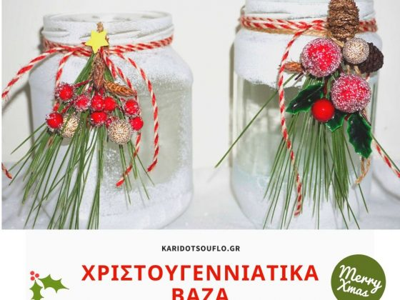 ftiachnoyme-leyka-christoygenniatika-vaza