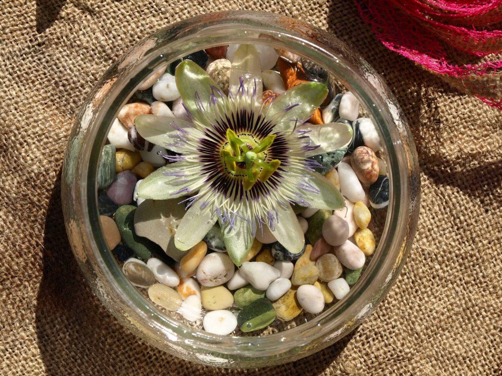 Διακόσμηση με πετραδάκια και ένα λουλούδι