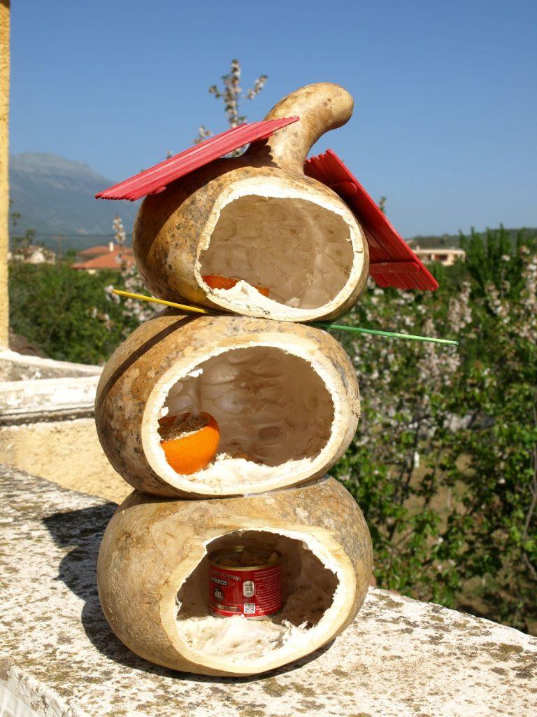 Φτιάχνουμε ταΐστρα για πουλιά από κολοκύθες