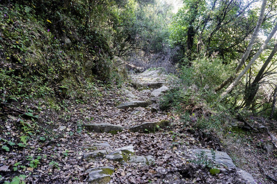 Μονοπάτια Ταϋγέτου: Παρόρι - Ζαγούνα - Φανερωμένη